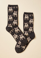 Pup the Ante Socks