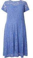 Dorothy Perkins Womens DP Curve Plus Size Blue Lace Midi Fit And Flare Dress- Blue