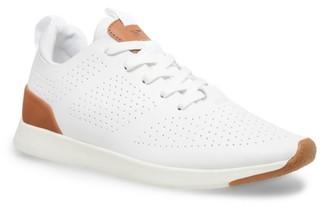 Steve Madden Scarpe Sneaker