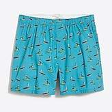 J.Crew Factory Paddleboard dog boxers