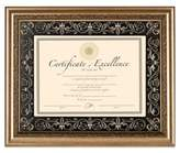 Bed Bath & Beyond 8.5-Inch x 11-Inch Deluxe Document Wood Frame in Florence Gold