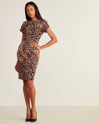 Calvin Klein Short Sleeve Animal Print Sheath Dress