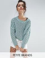 Noisy May Petite Circular Knit Sweater