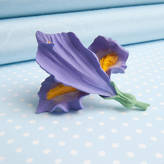 Good Intentions Iris Brooch In A Choice Of Natural Colours
