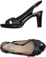 Geox Sandals - Item 11183700