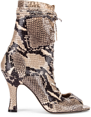 Paris Texas Python Print Lace Up Bootie in New Natural | FWRD