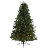 Asstd National Brand 9' x 72 Pre-Lit Everlands Skandia Fir ArtificialChristmas Tree with Warm Clear LED Lights
