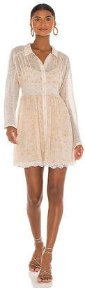 Free People Sheer Romance Mini Dress