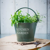 Houseology Garden Trading Small Kitchen Garden Bucket Thyme