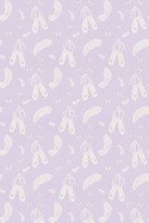 Sanderson Fabric Ballet Shoes