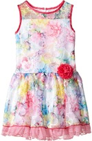 Us Angels Sleeveless Illusion Drop Waist Lace Dress (Toddler/Little Kids)