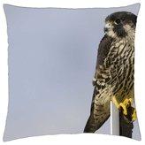 "iRocket - Hawk - Throw Pillow Cover (14"" x 14"", 35cm x 35cm)"