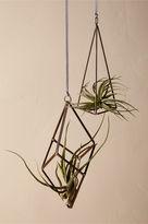 BHLDN Taos Wire Planters