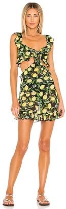 Lovers + Friends Citrina Mini Dress
