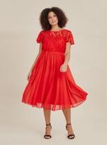 Evans **Scarlett & Jo Red Lace Midi Dress