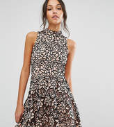 Missguided High Neck Contrast Lace Skater Dress