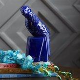 CB2 Parrot