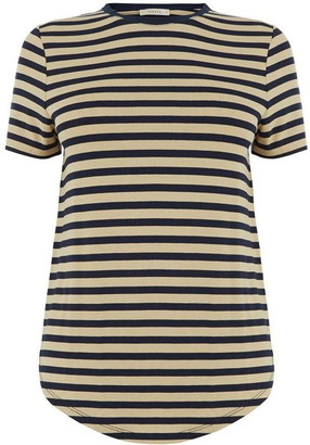 Oasis Dip Hem Stripe Formal T-Shirt