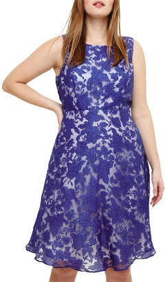 Studio 8 Kew Sleeveless Dress, Cobalt/Ivory