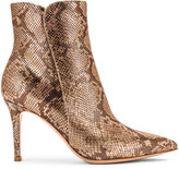 Gianvito Rossi Dallas Ankle Booties in Mekong | FWRD