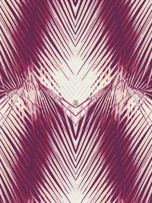 Roberto Cavalli Charlize Wallpaper