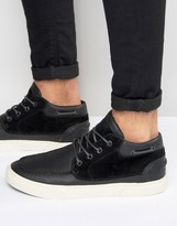 Pointer Taylor Mid Plimsolls In Leather