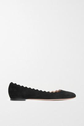 Chloé Lauren Scalloped Suede Ballet Flats - Black