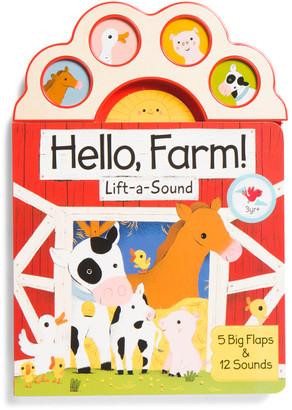 Lift A Flap 4 Button Sound Book