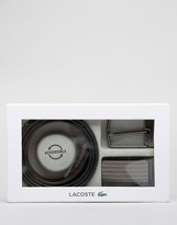 Lacoste Reversible Leather Belt Gift Box