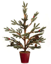 Lord & Taylor Modern Cabin 24-Inch Pre-Lit Potted Tree
