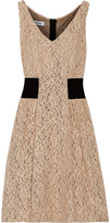 Moschino Cotton-blend knitted lace dress