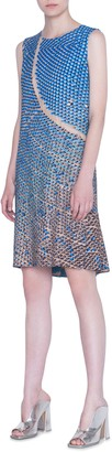 Akris Punto Solar Plants Print Sleeveless Shift Dress