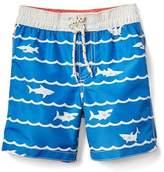 Gap Shark wave swim trunks