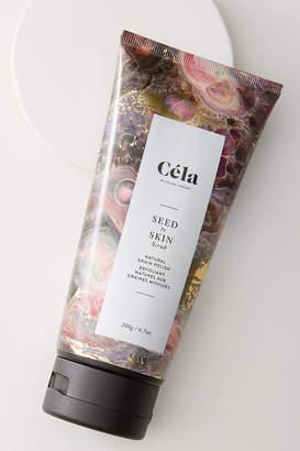 Cela Seed To Skin Scrub