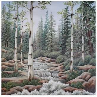 CAROL J. Trademark Fine Art Rupp 'Summer Stream' Canvas Art