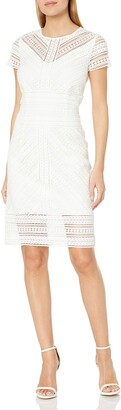 Laundry by Shelli Segal Women's Short Sleeve Mitered Stripe Lace Sheath