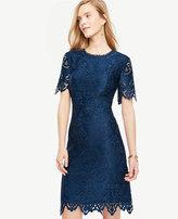 Ann Taylor Petite Botanical Lace Sheath Dress