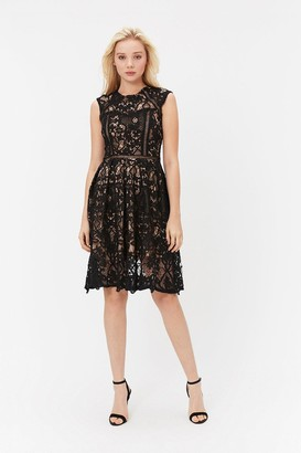Coast Cap Sleeve Lace Dress