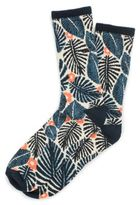 Vans Tropic Havana Crew Sock 1 Pack
