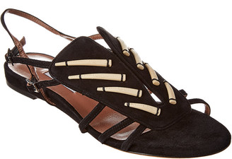 Tabitha Simmons Thistle Suede Sandal