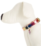 Betsey Johnson xox Trolls Rainbow Dog Collar