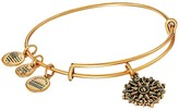 Alex and Ani Path of Symbols-Compass III Bangle (Rafaelian Gold) Bracelet