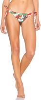 Salinas Hula Hula Side Tie Bikini Bottom