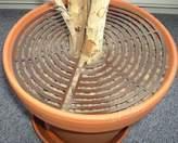 Equipment Safetots Plant Pot Soil Guard Brown