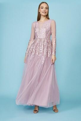 Coast Long Sleeve Embroidered Maxi Dress