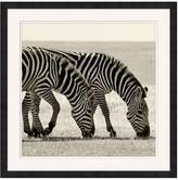 Pottery Barn Safari Zebra Framed Print