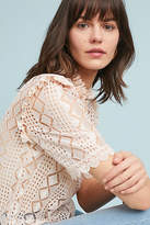 Plenty by Tracy Reese Stein Lace Blouse