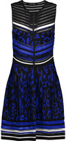 Roberto Cavalli Pointelle-trimmed jacquard-knit mini dress