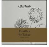 Miller Harris Pillar Candle 1.5kg - Feuilles de Tabac