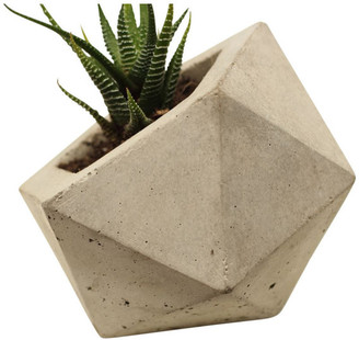 Rough Fusion Geodesic Planter, Dark Gray